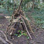 ejemplo de actividades que se realizan en los bosque escuela