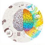 cerebro relacionado con asignaturas escolares